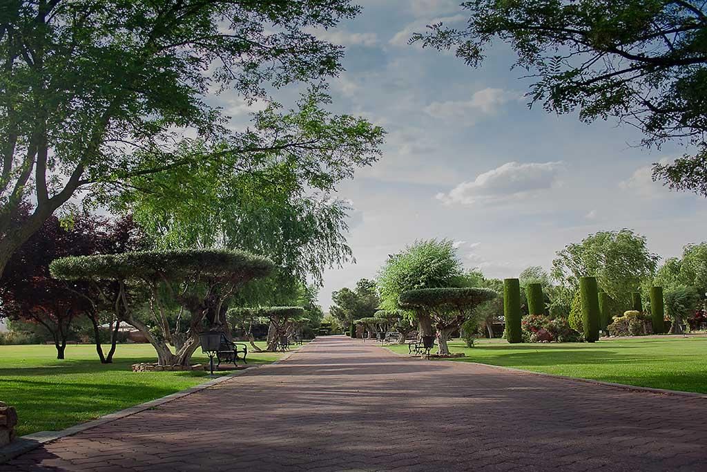 jardines Los Olivos